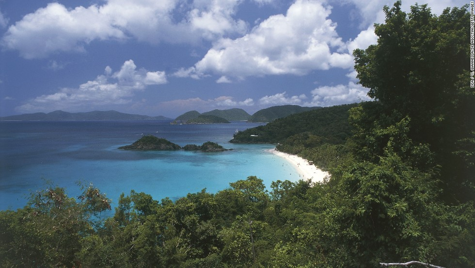 virgin islands national park forest in St. John - Caribbean Forests